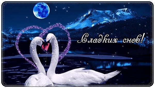 Красивые картинки пожелания сладких снов