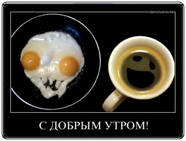С добрым утром картинки прикольные смешные