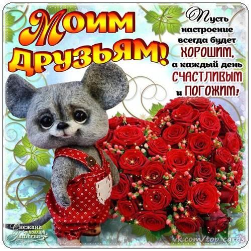 Пожелания доброго дня лучшему другу