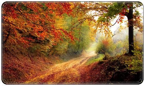 Картинки осень красивые нежные