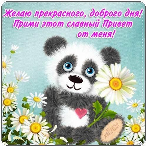 Пожелание доброго хорошего дня в прозе