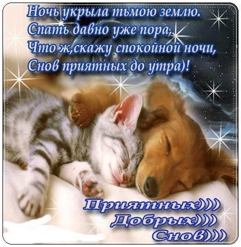 Нежные пожелания спокойной ночи любимому своими словами
