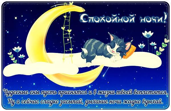 Прикольные пожелания спокойной ночи мужчине