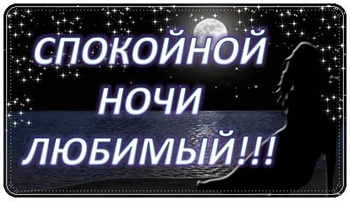 Пожелания спокойной ночи любимому парню в стихах
