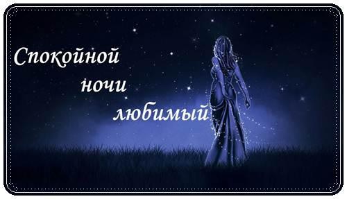 Красивые пожелание спокойной ночи любимому в стихах
