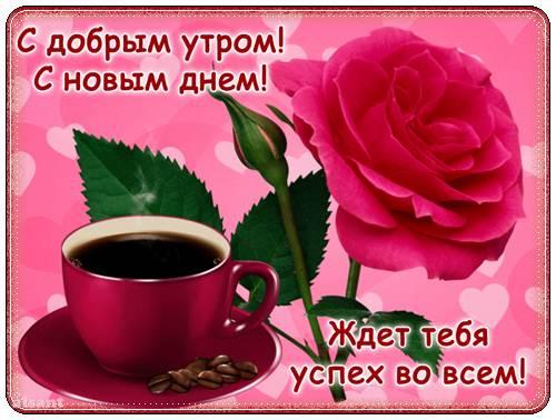 доброе утро и хорошего дня