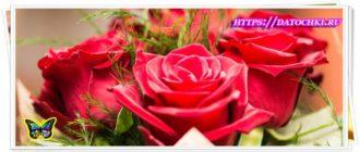 Поздравление женщинам 8 марта красивые стихи